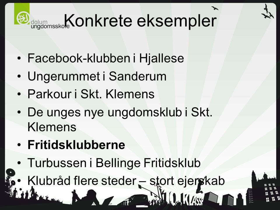 Konkrete eksempler Facebook-klubben i Hjallese Ungerummet i Sanderum Parkour i Skt.