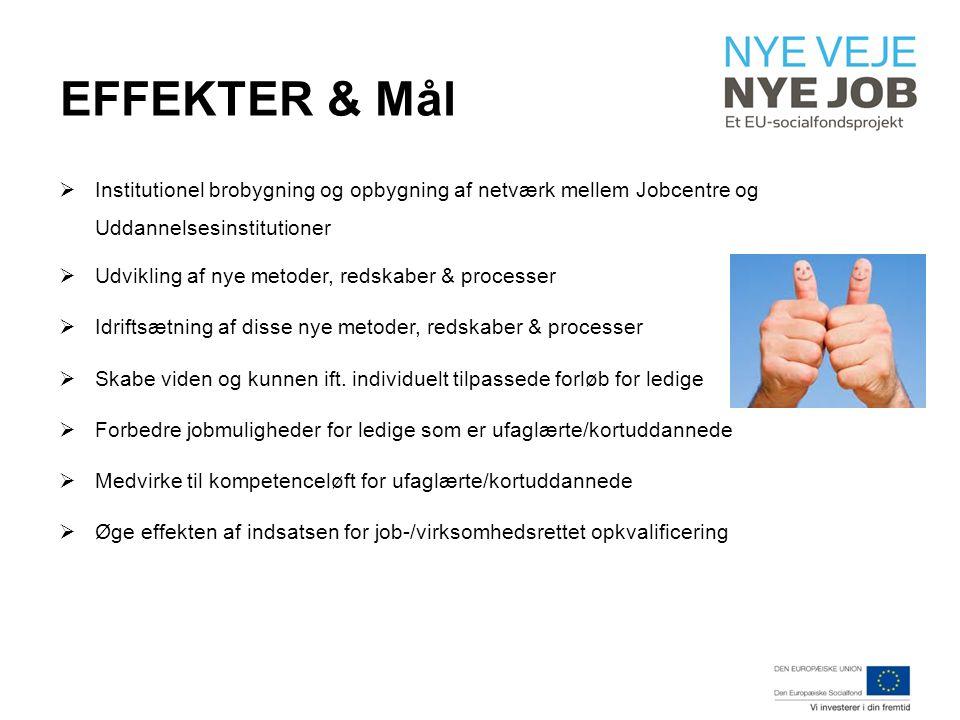 EFFEKTER & Mål  Institutionel brobygning og opbygning af netværk mellem Jobcentre og Uddannelsesinstitutioner  Udvikling af nye metoder, redskaber & processer  Idriftsætning af disse nye metoder, redskaber & processer  Skabe viden og kunnen ift.