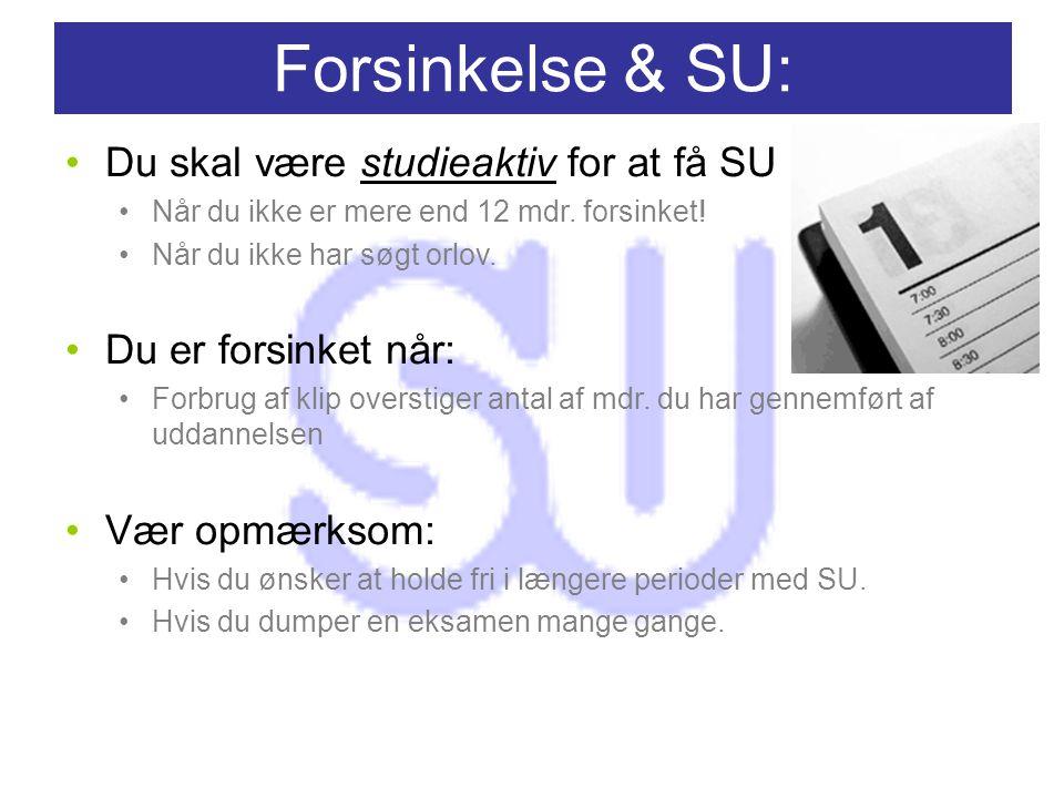 Forsinkelse & SU: Du skal være studieaktiv for at få SU Når du ikke er mere end 12 mdr.