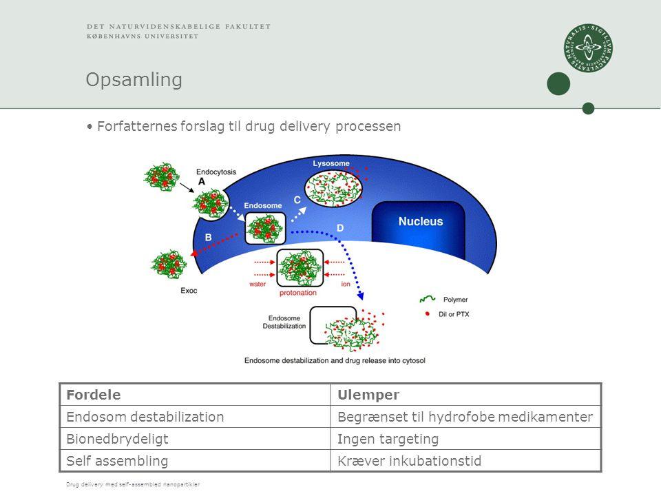 Drug delivery med self-assembled nanopartikler Opsamling Forfatternes forslag til drug delivery processen FordeleUlemper Endosom destabilizationBegrænset til hydrofobe medikamenter BionedbrydeligtIngen targeting Self assemblingKræver inkubationstid