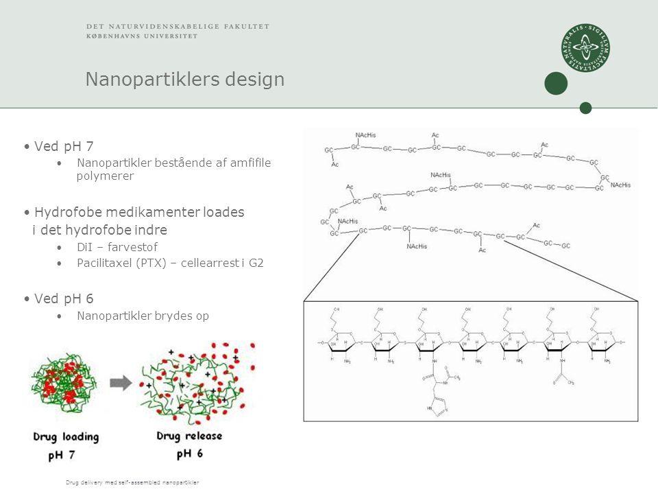 Drug delivery med self-assembled nanopartikler Nanopartiklers design Ved pH 7 Nanopartikler bestående af amfifile polymerer Hydrofobe medikamenter loades i det hydrofobe indre DiI – farvestof Pacilitaxel (PTX) – cellearrest i G2 Ved pH 6 Nanopartikler brydes op