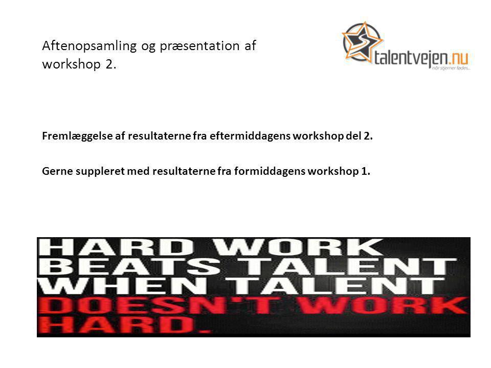 Aftenopsamling og præsentation af workshop 2.