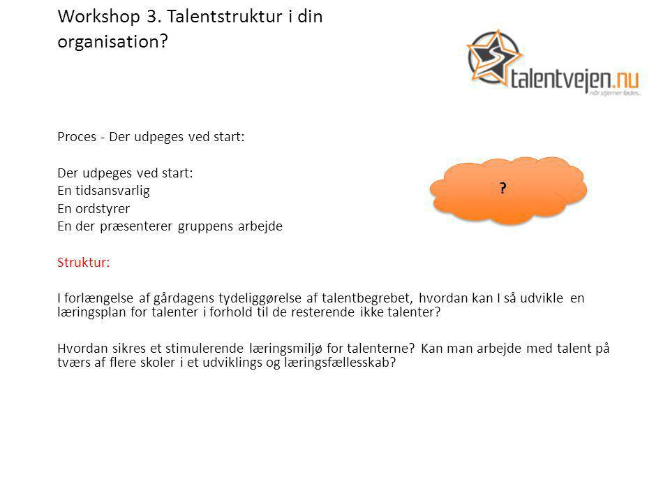 Workshop 3. Talentstruktur i din organisation.
