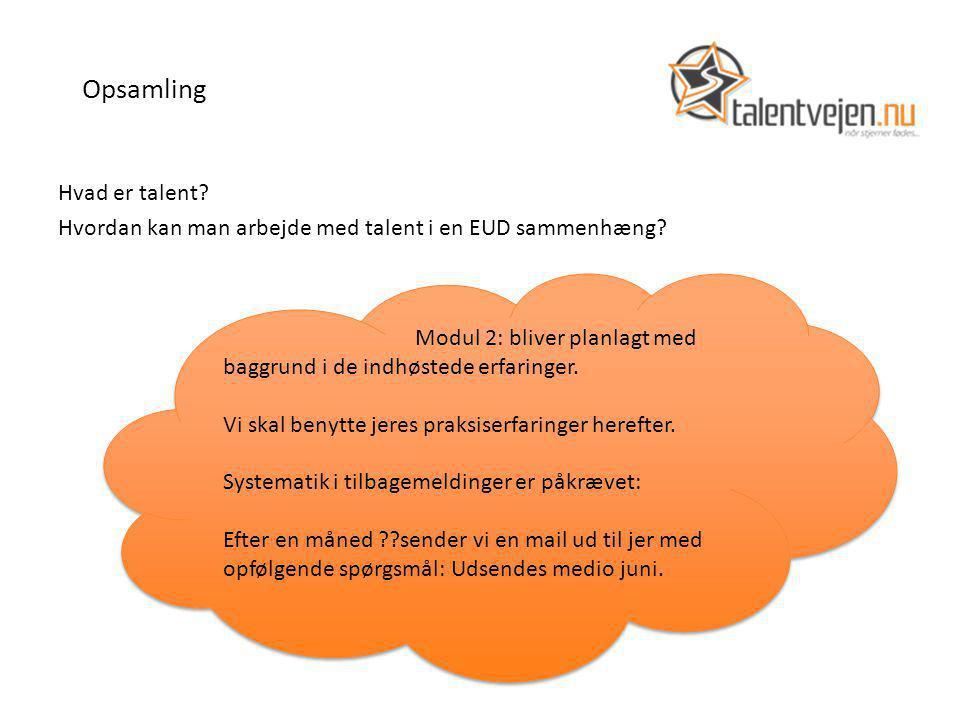 Opsamling Hvad er talent. Hvordan kan man arbejde med talent i en EUD sammenhæng.
