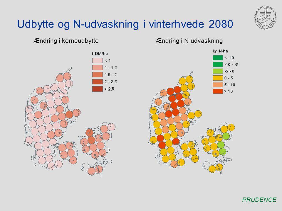 Udbytte og N-udvaskning i vinterhvede 2080 Ændring i kerneudbytteÆndring i N-udvaskning PRUDENCE