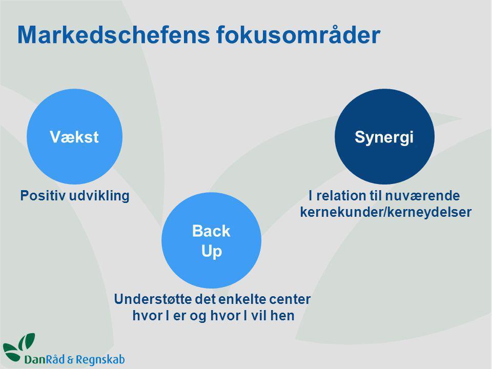 SynergiVækst Back Up Positiv udvikling Understøtte det enkelte center hvor I er og hvor I vil hen I relation til nuværende kernekunder/kerneydelser Markedschefens fokusområder
