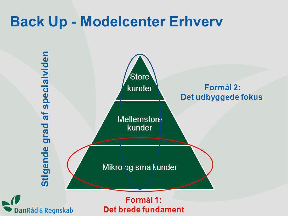 Store kunder Mellemstore kunder Mikro og små kunder Stigende grad af specialviden Formål 1: Det brede fundament Formål 2: Det udbyggede fokus Back Up - Modelcenter Erhverv