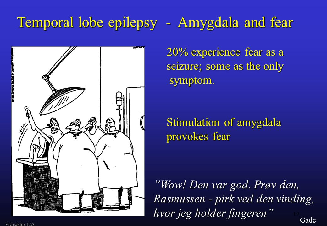 19 Gade Temporal lobe epilepsy - Amygdala and fear 20% experience fear as a seizure; some as the only symptom.