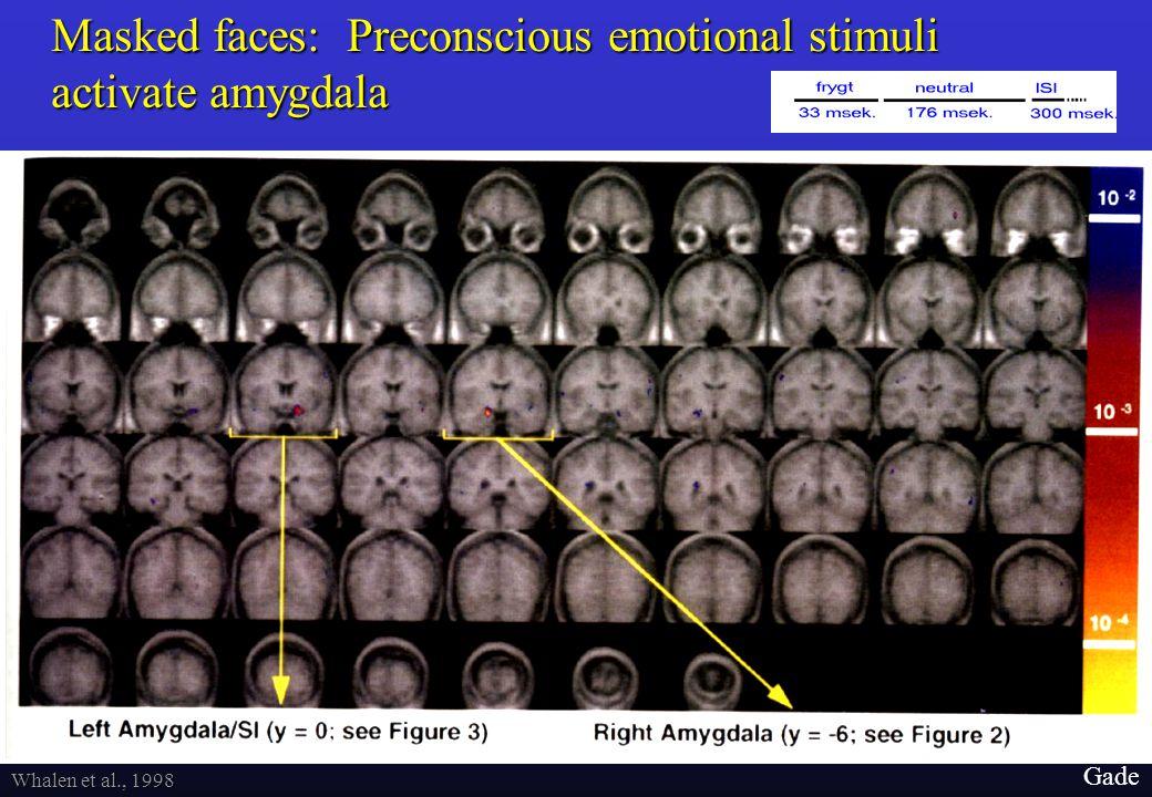 28 Gade fMRI m. 28 sek. epoker med skiftevis maskeret frygt, maskeret glæde, og fiksation.