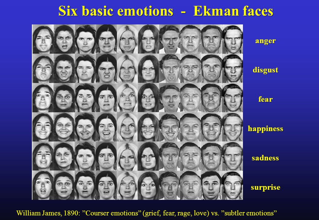 angerdisgustfearhappinesssadnesssurprise Six basic emotions - Ekman faces William James, 1890: Courser emotions (grief, fear, rage, love) vs.
