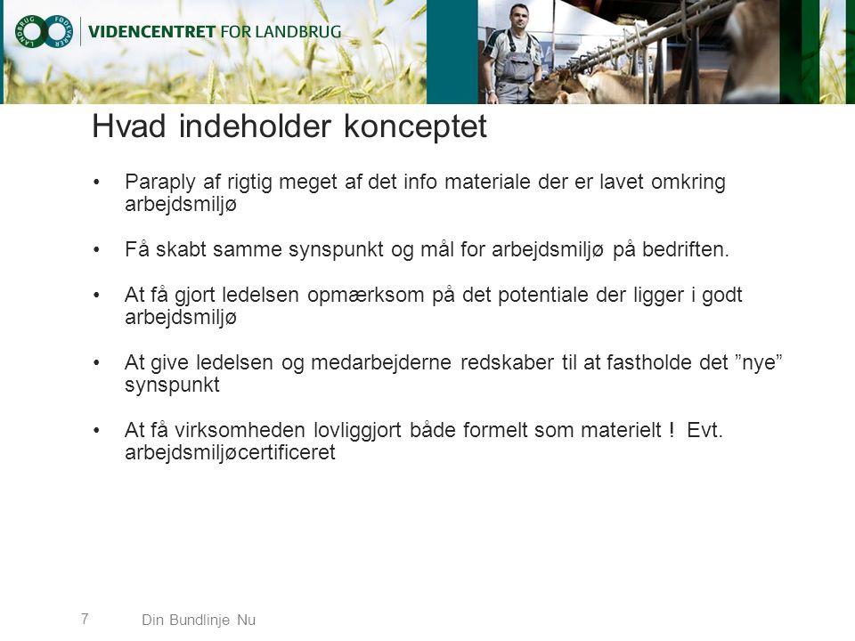 Hvad indeholder konceptet Paraply af rigtig meget af det info materiale der er lavet omkring arbejdsmiljø Få skabt samme synspunkt og mål for arbejdsmiljø på bedriften.