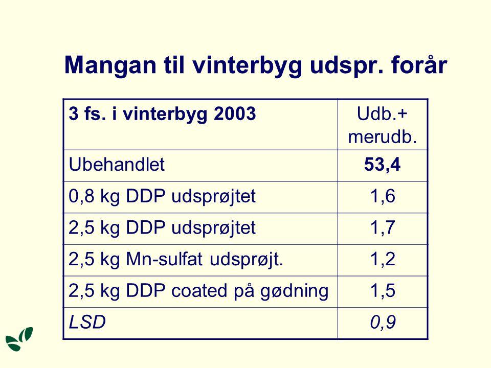 Mangan til vinterbyg udspr. forår 3 fs. i vinterbyg 2003Udb.+ merudb.