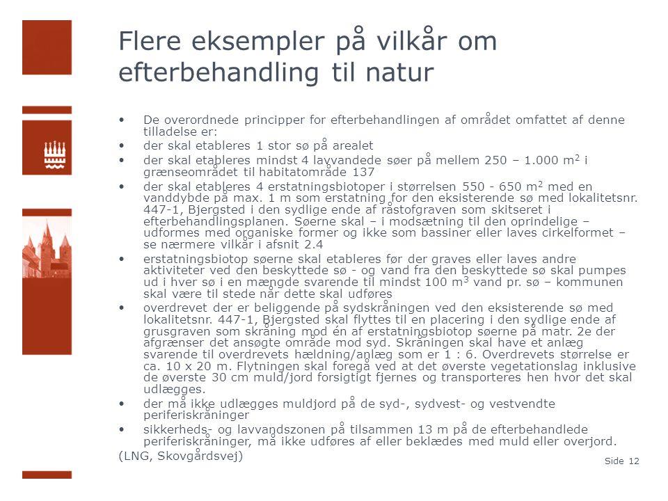 Flere eksempler på vilkår om efterbehandling til natur De overordnede principper for efterbehandlingen af området omfattet af denne tilladelse er: der skal etableres 1 stor sø på arealet der skal etableres mindst 4 lavvandede søer på mellem 250 – 1.000 m 2 i grænseområdet til habitatområde 137 der skal etableres 4 erstatningsbiotoper i størrelsen 550 - 650 m 2 med en vanddybde på max.