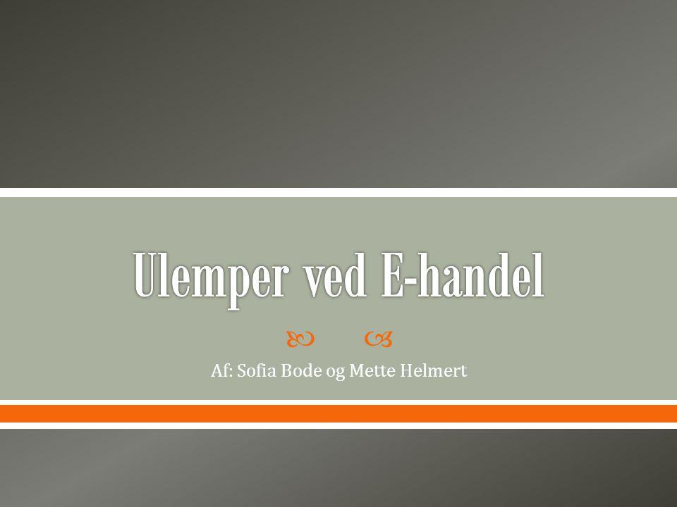  Af: Sofia Bode og Mette Helmert