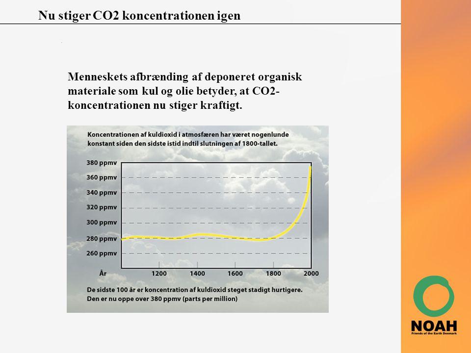 Nu stiger CO2 koncentrationen igen Menneskets afbrænding af deponeret organisk materiale som kul og olie betyder, at CO2- koncentrationen nu stiger kr