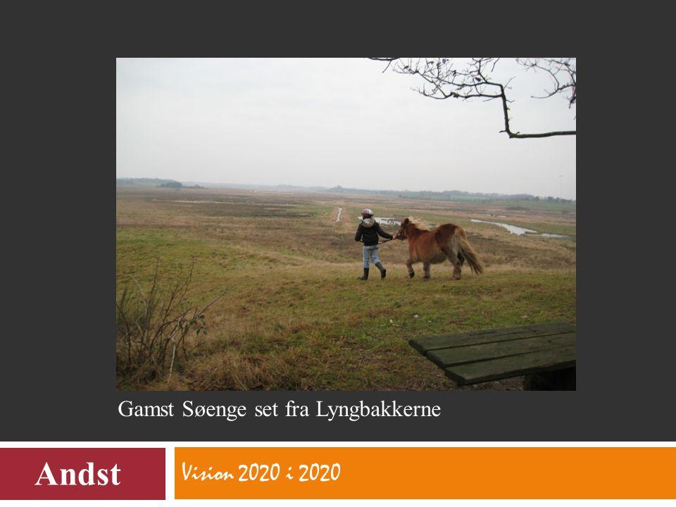 Vision 2020 i 2020 Andst Gamst Søenge set fra Lyngbakkerne