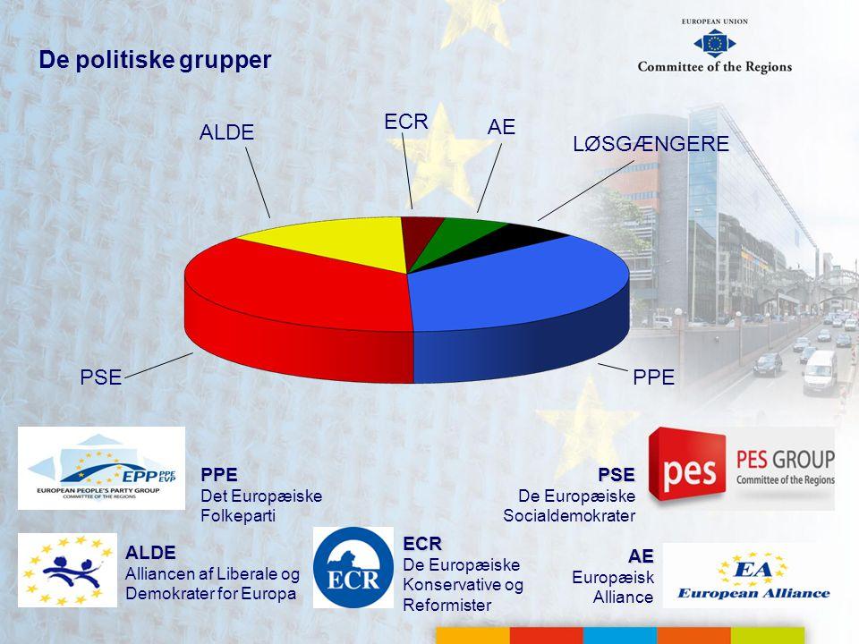 De politiske grupper PSE De Europæiske Socialdemokrater AE Europæisk Alliance PPE Det Europæiske Folkeparti ALDE Alliancen af Liberale og Demokrater for Europa PSE ALDE AE LØSGÆNGERE PPE ECR De Europæiske Konservative og Reformister ECR
