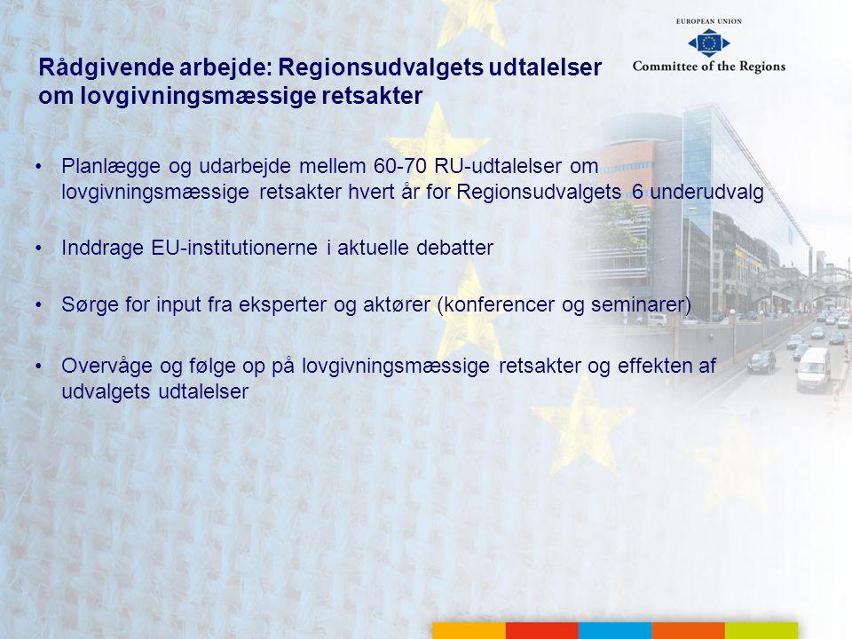 Rådgivende arbejde: Regionsudvalgets udtalelser om lovgivningsmæssige retsakter Planlægge og udarbejde mellem 60-70 RU-udtalelser om lovgivningsmæssige retsakter hvert år for Regionsudvalgets 6 underudvalg Inddrage EU-institutionerne i aktuelle debatter Sørge for input fra eksperter og aktører (konferencer og seminarer) Overvåge og følge op på lovgivningsmæssige retsakter og effekten af udvalgets udtalelser