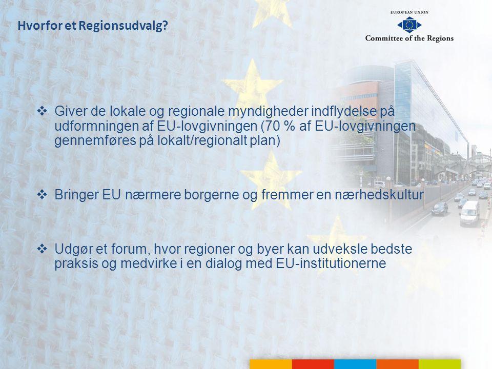 Hvorfor et Regionsudvalg.