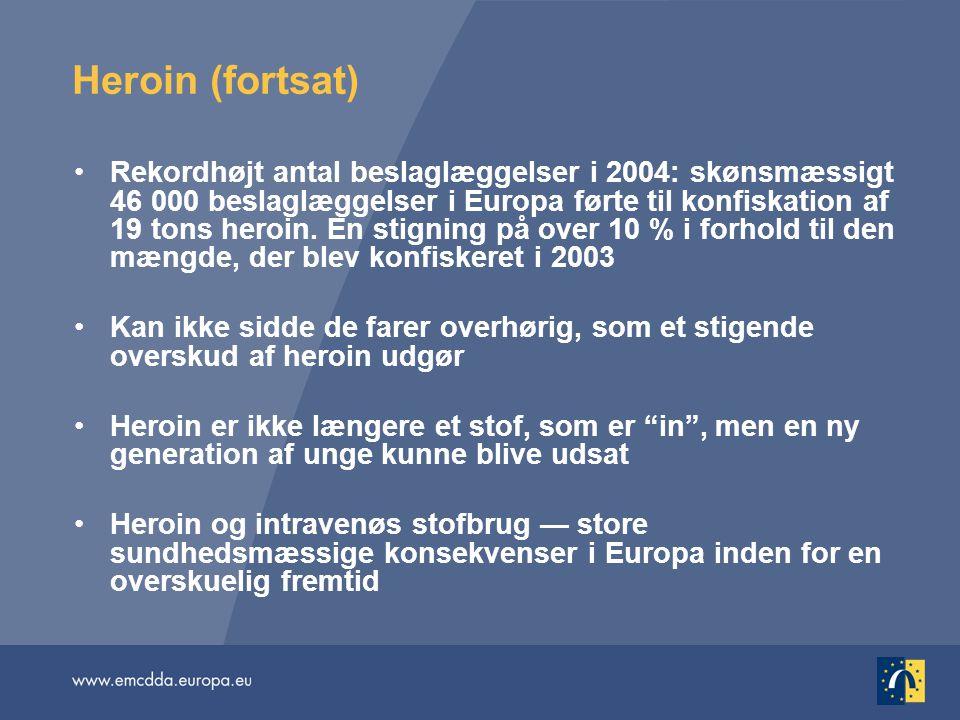 Heroin (fortsat) Rekordhøjt antal beslaglæggelser i 2004: skønsmæssigt 46 000 beslaglæggelser i Europa førte til konfiskation af 19 tons heroin.