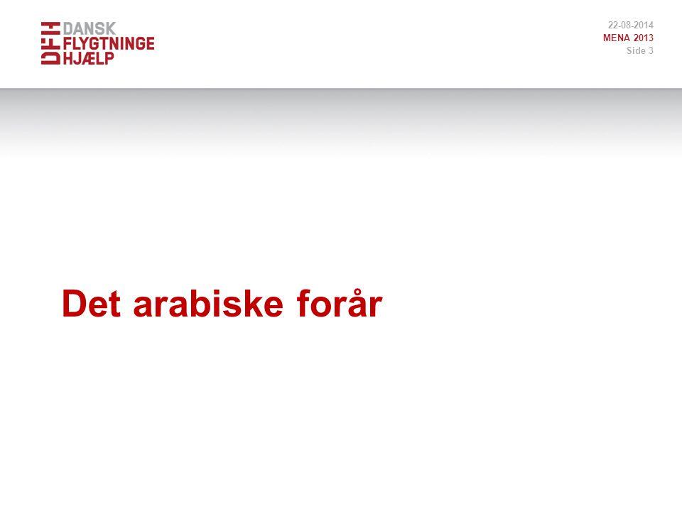 Det arabiske forår 22-08-2014 MENA 2013 Side 3