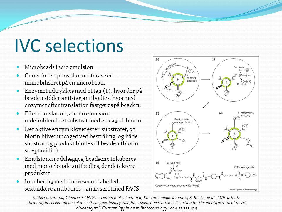 IVC selections Microbeads i w/o emulsion Genet for en phosphotriesterase er immobiliseret på en microbead.