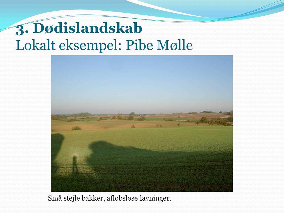 3. Dødislandskab Lokalt eksempel: Pibe Mølle Små stejle bakker, afløbsløse lavninger.