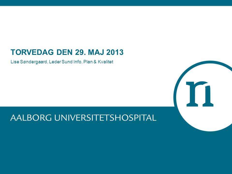 TORVEDAG DEN 29. MAJ 2013 Lise Søndergaard, Leder Sund Info, Plan & Kvalitet