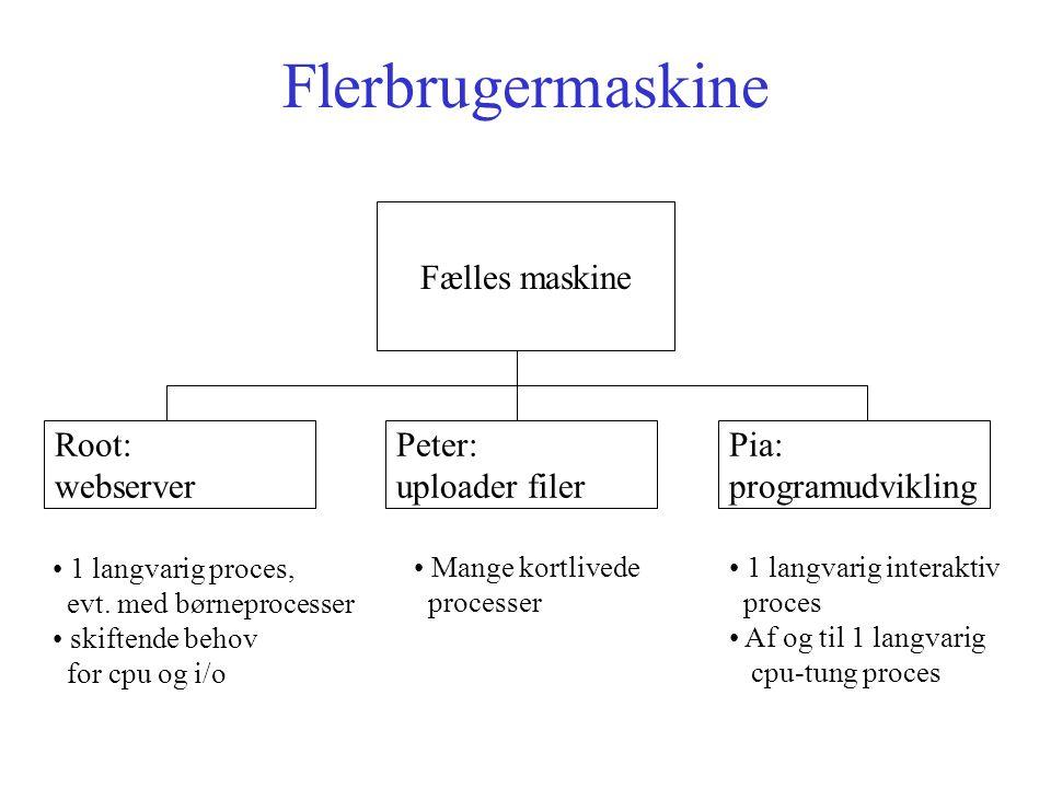 Flerbrugermaskine Fælles maskine Root: webserver Peter: uploader filer Pia: programudvikling 1 langvarig proces, evt.