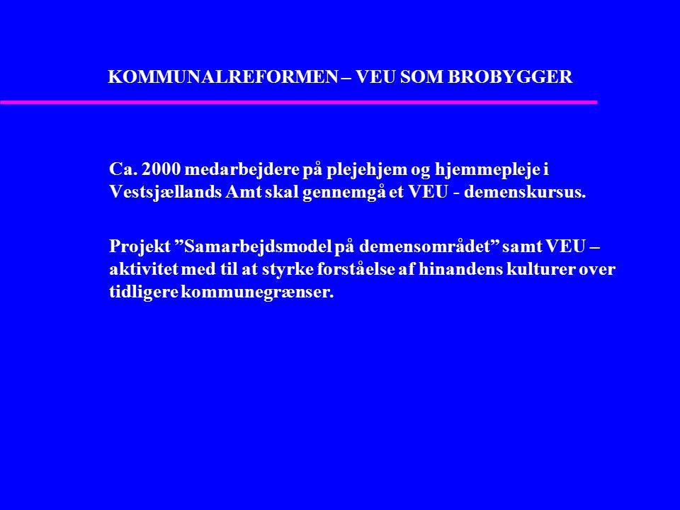 KOMMUNALREFORMEN – VEU SOM BROBYGGER Ca.