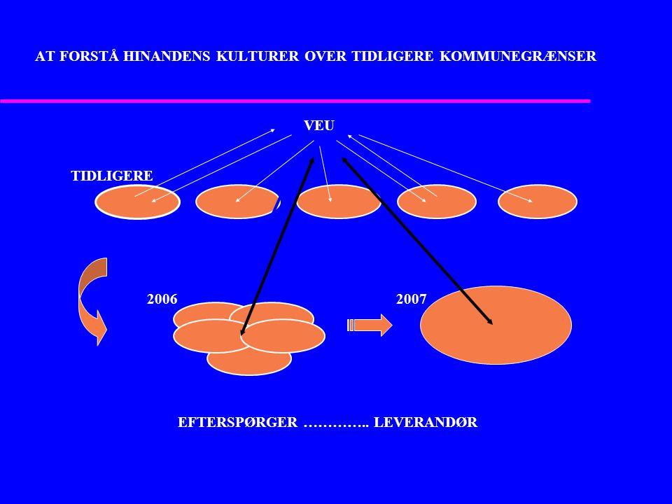 AT FORSTÅ HINANDENS KULTURER OVER TIDLIGERE KOMMUNEGRÆNSER VEU TIDLIGERE 2006 2007 VEU 20062007 TIDLIGERE EFTERSPØRGER …………..