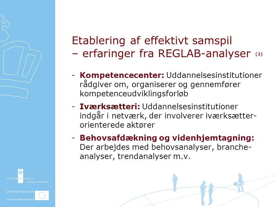 Etablering af effektivt samspil – erfaringer fra REGLAB-analyser (2) Kompetencecenter: Uddannelsesinstitutioner rådgiver om, organiserer og gennemfører kompetenceudviklingsforløb Iværksætteri: Uddannelsesinstitutioner indgår i netværk, der involverer iværksætter- orienterede aktører Behovsafdækning og videnhjemtagning: Der arbejdes med behovsanalyser, branche- analyser, trendanalyser m.v.