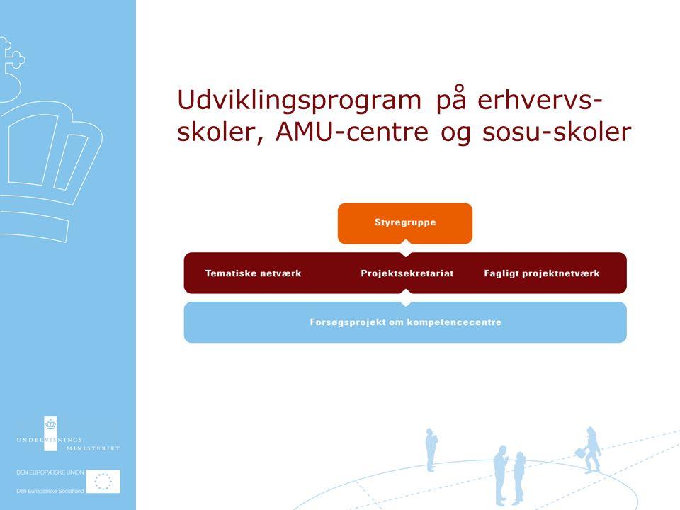 Udviklingsprogram på erhvervs- skoler, AMU-centre og sosu-skoler