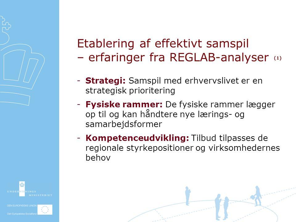 Etablering af effektivt samspil – erfaringer fra REGLAB-analyser (1) Strategi: Samspil med erhvervslivet er en strategisk prioritering Fysiske rammer: De fysiske rammer lægger op til og kan håndtere nye lærings- og samarbejdsformer Kompetenceudvikling: Tilbud tilpasses de regionale styrkepositioner og virksomhedernes behov