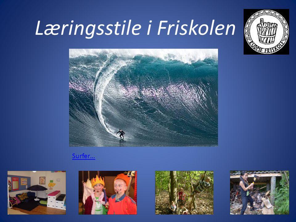 Læringsstile i Friskolen Surfer…