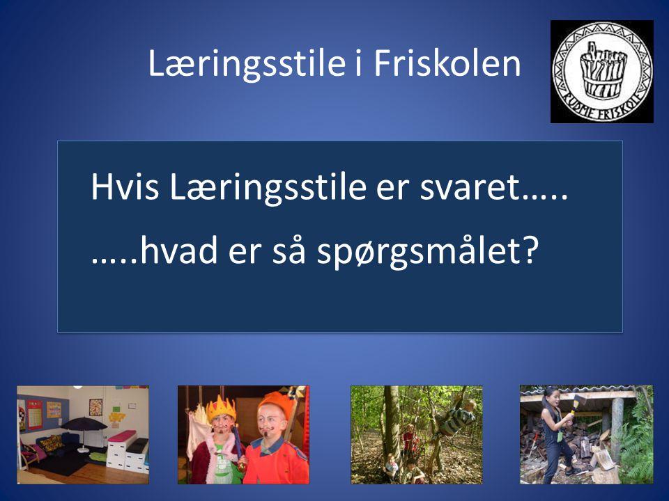 Læringsstile i Friskolen Hvis Læringsstile er svaret….. …..hvad er så spørgsmålet