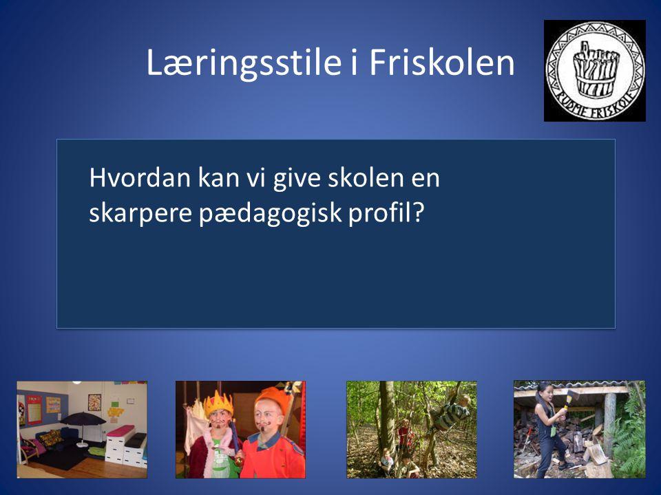 Læringsstile i Friskolen Hvordan kan vi give skolen en skarpere pædagogisk profil