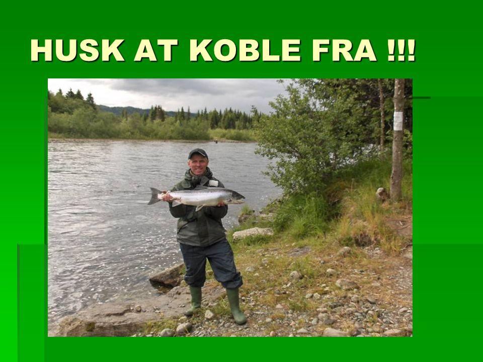 HUSK AT KOBLE FRA !!!