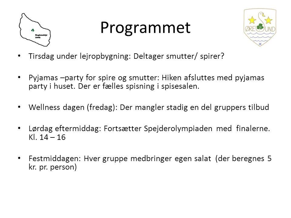 Programmet Tirsdag under lejropbygning: Deltager smutter/ spirer.