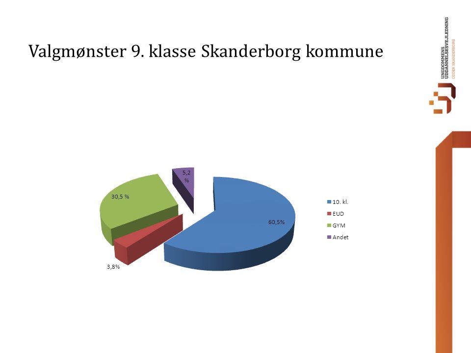 Valgmønster 9. klasse Skanderborg kommune