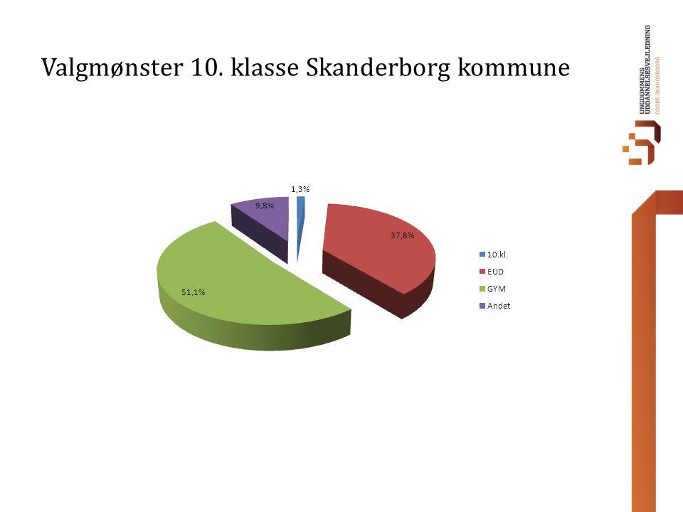 Valgmønster 10. klasse Skanderborg kommune
