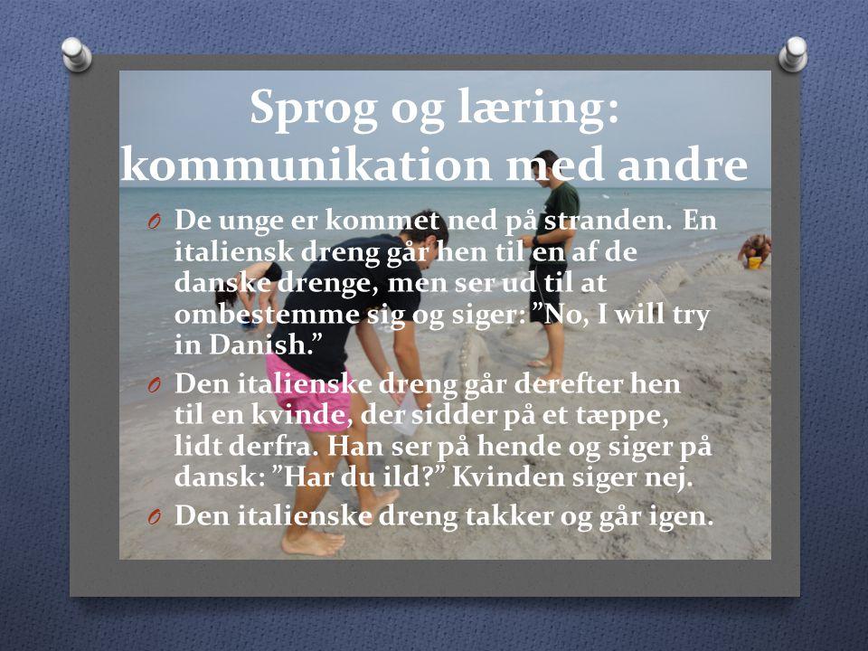 Sprog og læring: kommunikation med andre O De unge er kommet ned på stranden.