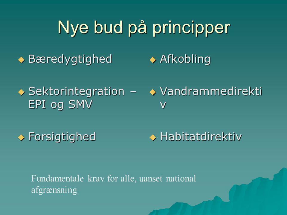 Nye bud på principper  Bæredygtighed  Sektorintegration – EPI og SMV  Forsigtighed  Afkobling  Vandrammedirekti v  Habitatdirektiv Fundamentale krav for alle, uanset national afgrænsning