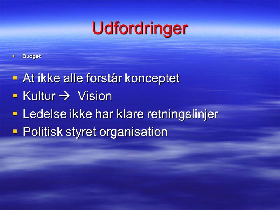 Udfordringer  Budget  At ikke alle forstår konceptet  Kultur  Vision  Ledelse ikke har klare retningslinjer  Politisk styret organisation