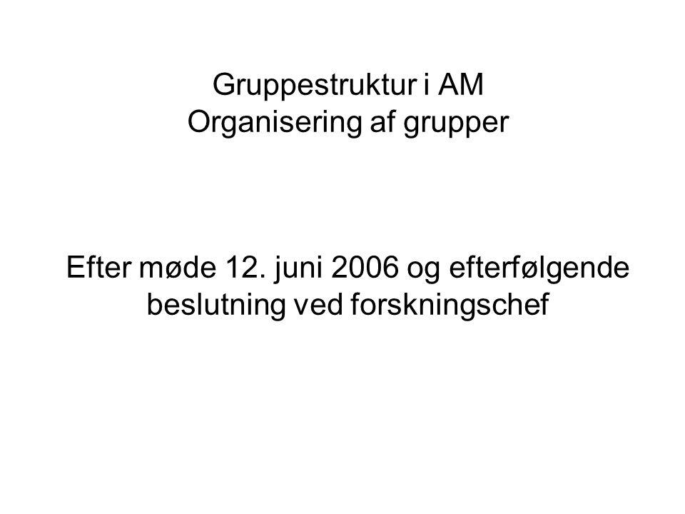 Gruppestruktur i AM Organisering af grupper Efter møde 12.