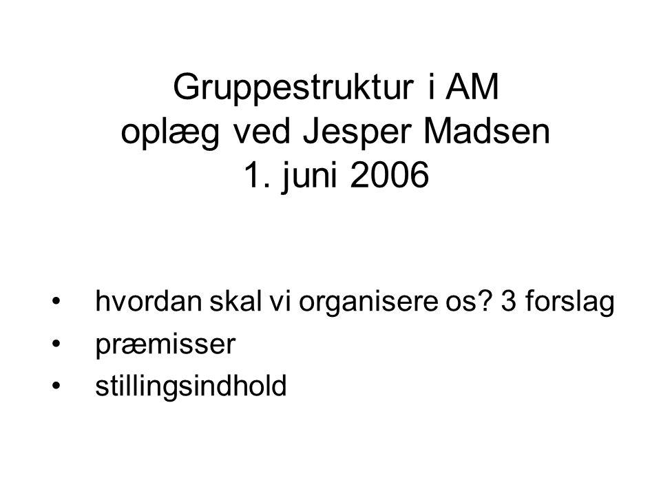 Gruppestruktur i AM oplæg ved Jesper Madsen 1. juni 2006 hvordan skal vi organisere os.