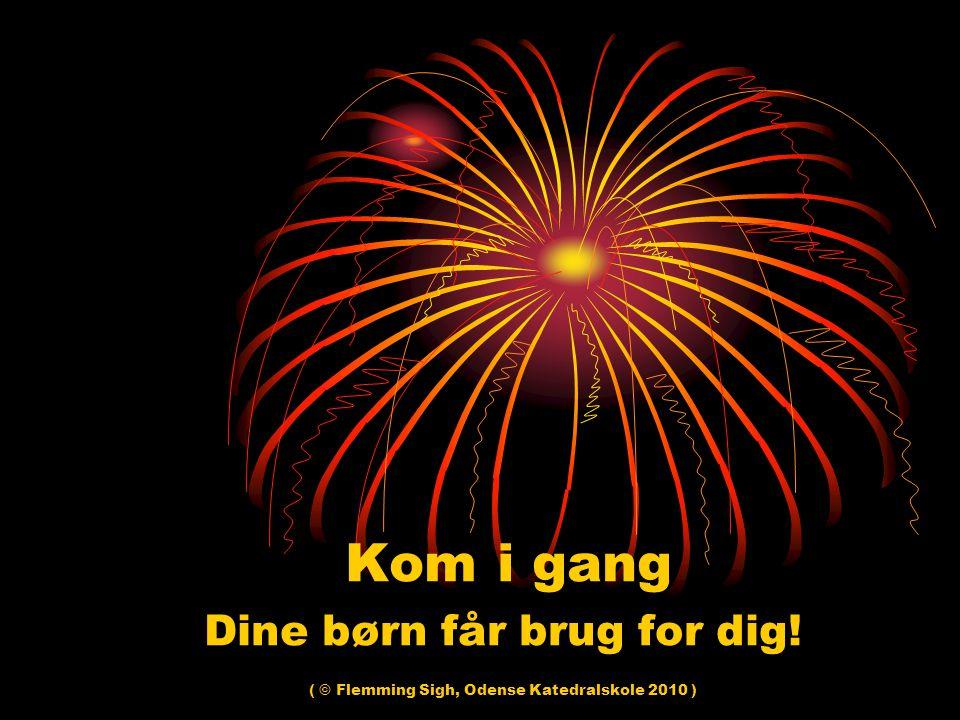 Kom i gang Dine børn får brug for dig! ( © Flemming Sigh, Odense Katedralskole 2010 )