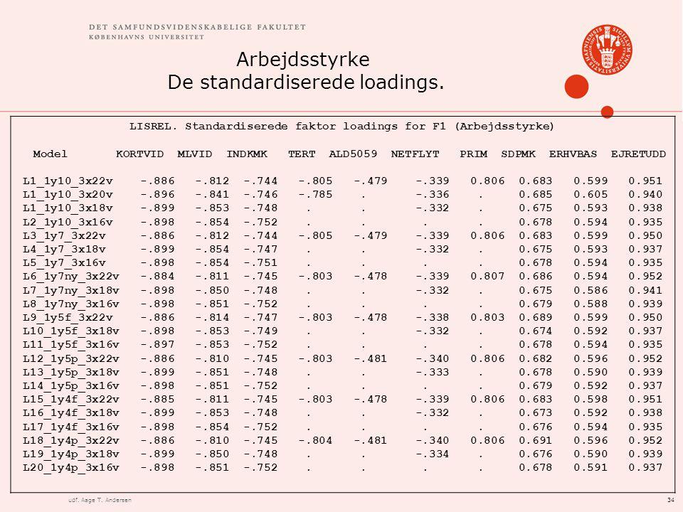34udf. Aage T. Andersen Arbejdsstyrke De standardiserede loadings.