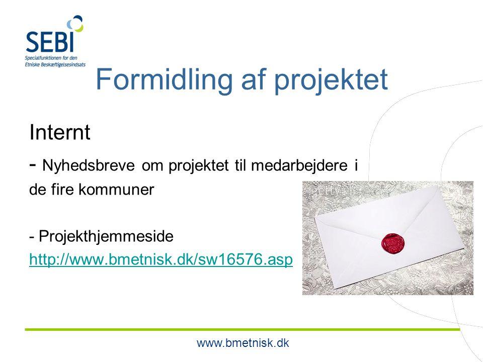 www.bmetnisk.dk Formidling af projektet Internt - Nyhedsbreve om projektet til medarbejdere i de fire kommuner - Projekthjemmeside http://www.bmetnisk.dk/sw16576.asp