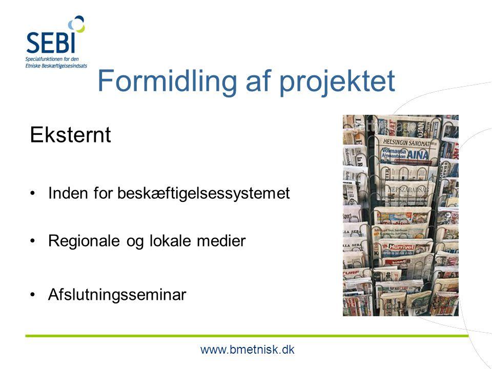 www.bmetnisk.dk Formidling af projektet Eksternt Inden for beskæftigelsessystemet Regionale og lokale medier Afslutningsseminar